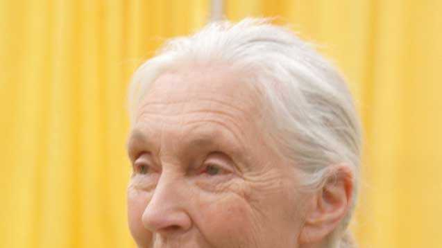 London celebrities - Jane Goodall