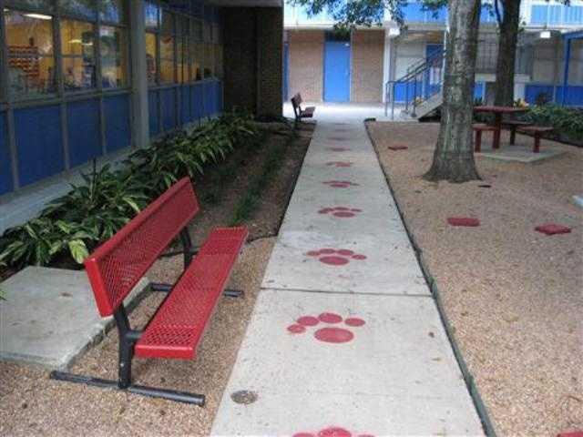 Texas -Houston Independent School District scores D (66).