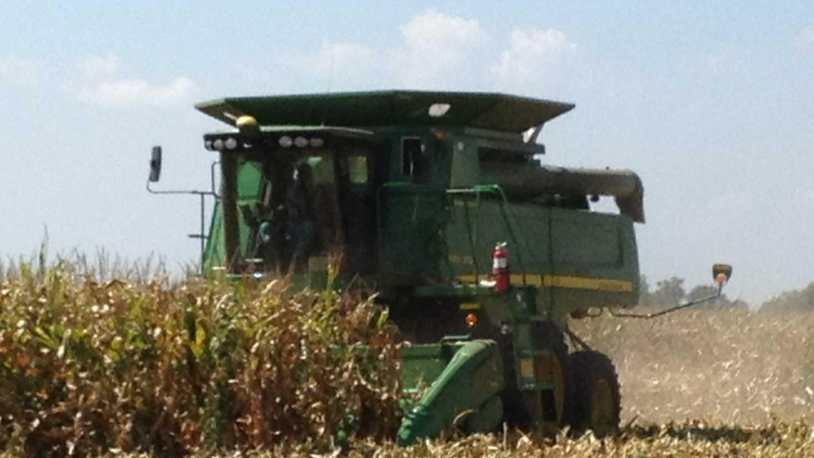 PHOTO: Harvest - generic farm