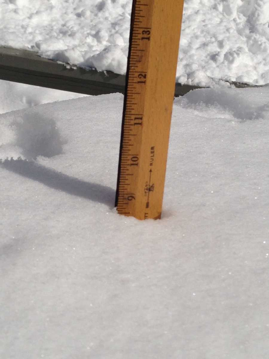 9 inches in Benson