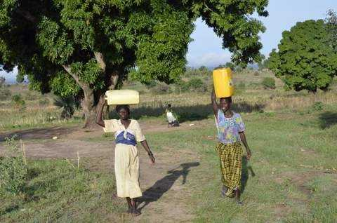 Each day women in Kadi make multiple trips to get water from a well.They balance thejugs on their head. The jugs weigh about 40poundseach. The walk can be up to four blocks away.