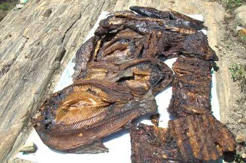 Dried fish from the Nile