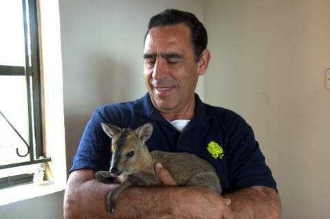 John Bueno with a baby antelope