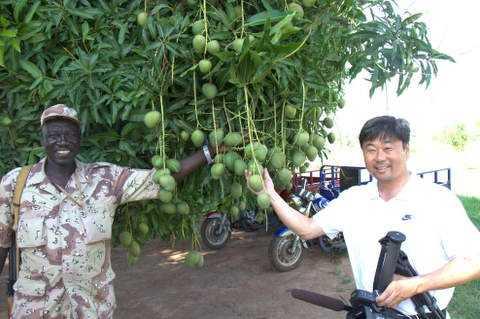 Modi and Andrew under the mango tree.