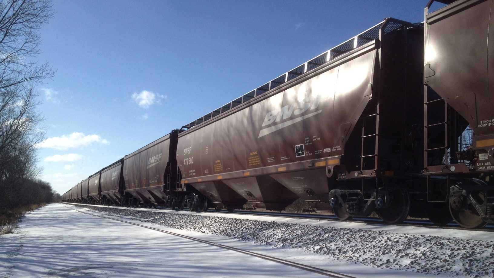 train-ped.JPG