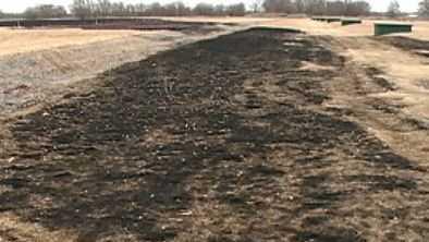 burnt grass