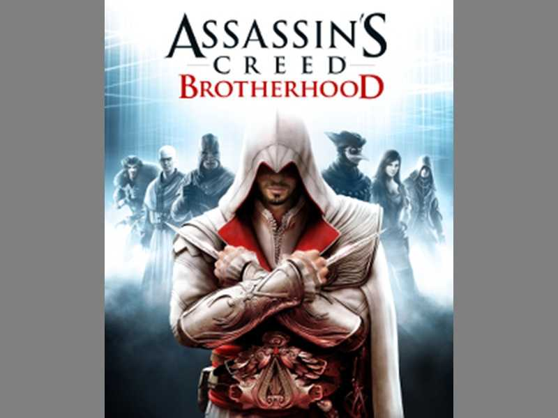 In Assassin's Creed Brotherhood, your player takes the role of a killer for hire that is able to recruit other characters into a fraternity of assassins. There are gory sword fights along with mature themes and dialogue that make this an adult-only experience.