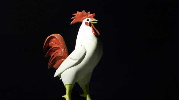 lee's chicken - rooster