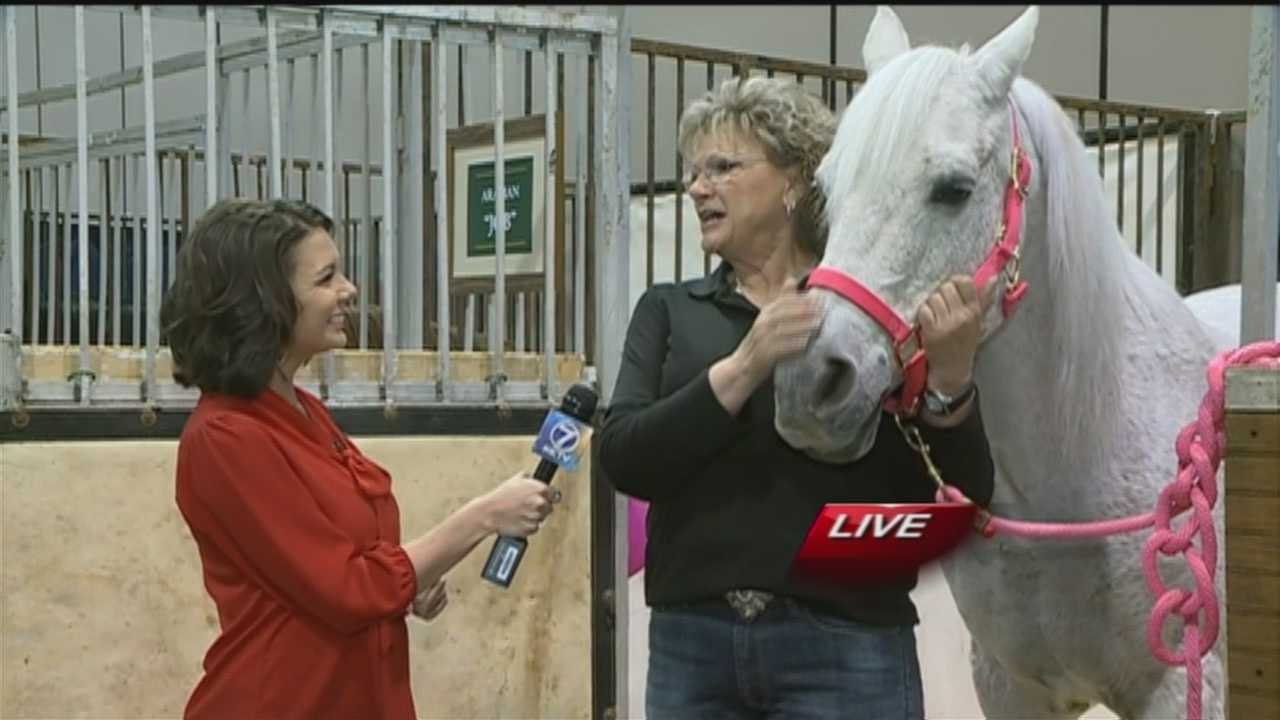 Amanda Crawford takes us behind the scenes at the CenturyLink Center Omaha, where The International horse-jumping competition will be held this weekend.