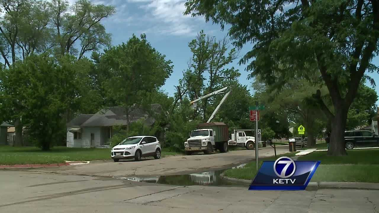 Thursday morning was busy for cleanup crews in the Fremont area, after a stormy night left sizeable damage.