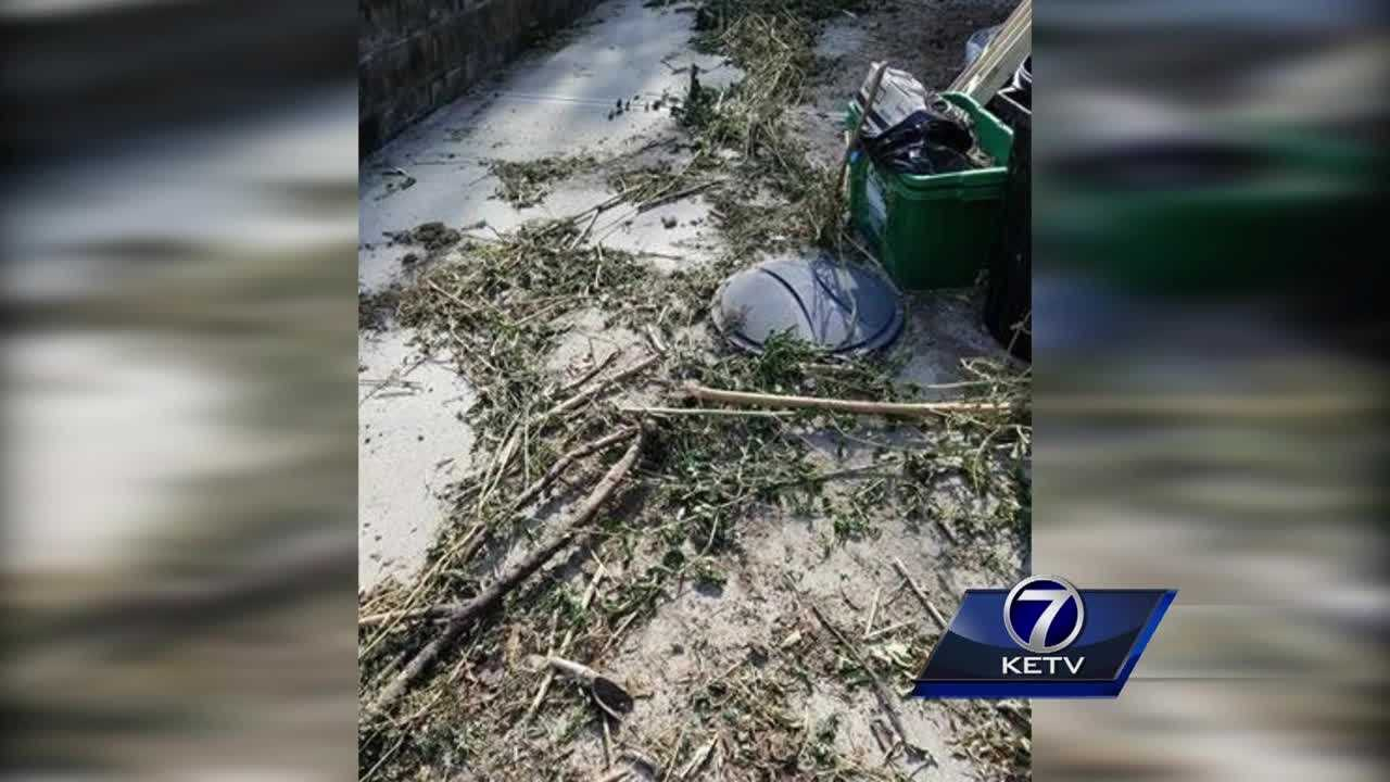 The video shows crews from Kozy Lawn Care dumping out bags of dirt, throwing things onto the yard, and dropping tree limbs across the driveway.