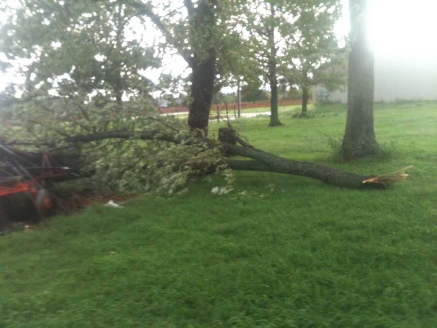 Bethel Heights tree damage