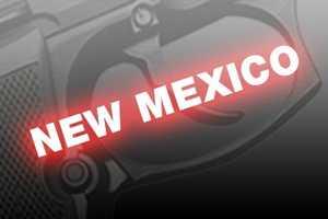 27. New Mexico, NICS background checks per 100k residents: 8,589