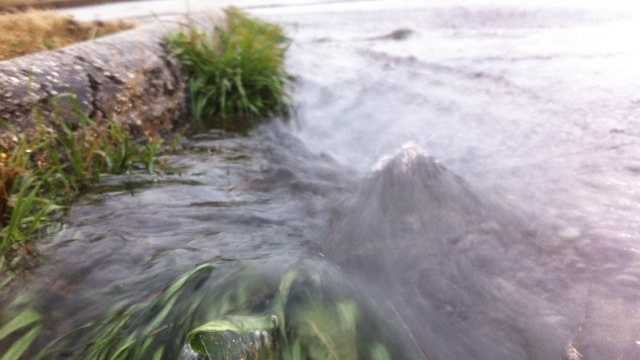 rain pic.JPG