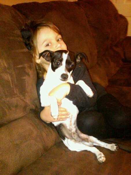 9. Derek's dog is named Eddie.