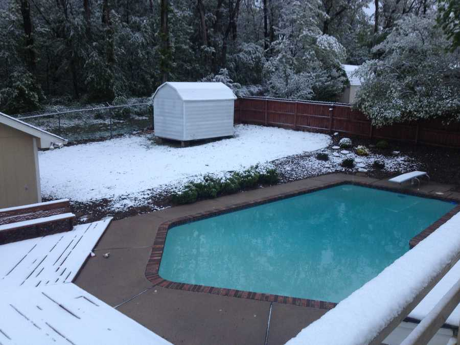 A snowy pool in Rogers.