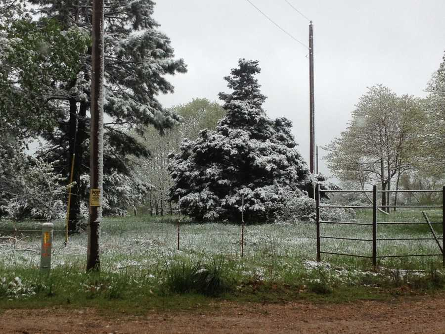 Snow in Garfield.