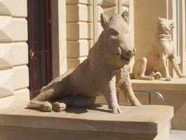 A sculpture of a pig at Osborne House on the Isle of Wight.