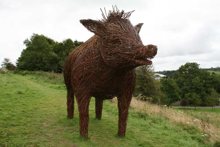 This wicker hog is from the National Botanic Garden of Wales.
