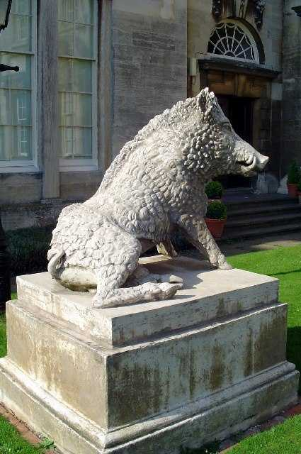 This boar has made his home at Normanby Hall, near Burton-upon-Stather in England.
