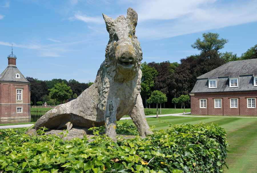 There are multiple razorbacks at this castle in Münster, Germany.
