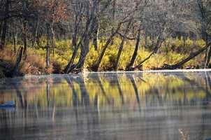 Yellow reflections on the Buffalo River.