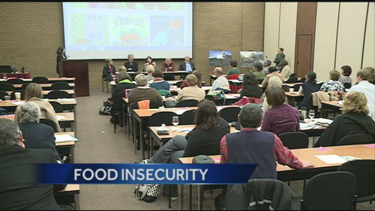 Food insecurity is a term used to describe a lack of access to wholesome, nutritious food