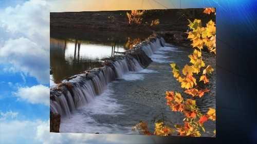 11-14 foliage pic
