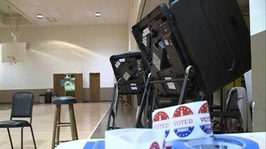 Vote Voter Voting Picture