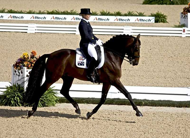 Owning a Horse:Horses can cost thousands of dollars to buy – and then hundreds more a month after that.