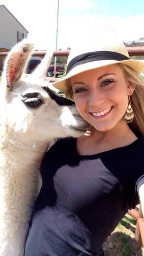 Larry the llama