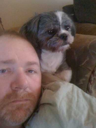 Oliver is one of my Shih tzu's and he stayed by my side all during my chemo treatments.