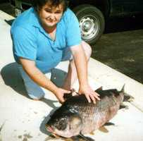 Arkansas's largest Bigmouth Buffalo caught by means other than a rod and reel weighed 56 pounds, 4 ounces when it was caught by Benny Alexander in Calion Lake in 2000.