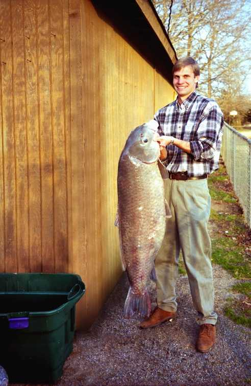 The record Black Buffalo weighed 68 pounds, 8 ounces when Jerry Dolzeal caught it in Lake Hamilton in 1984.