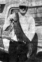 This record Bowfin was caught in 1977 in Desha County, by Doug Smith. It weighed 17 pounds, 5 ounces.