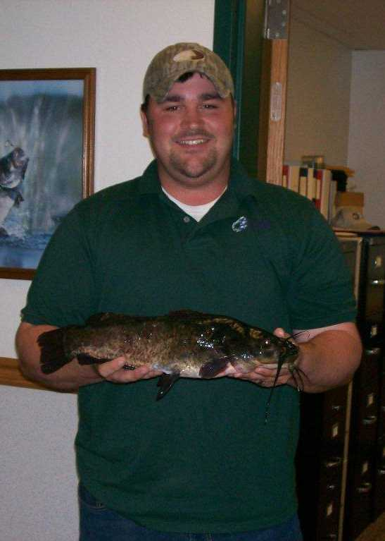 """Arkansas's largest Brown Bullhead was 3 pounds, 3 ounces when Christopher """"JJ"""" Holeman caught it in Upper White Oak Lake in 2013."""
