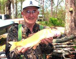 The record Golden Redhorse weighed 1 pound, 2 ounces when D. Victor Waits caught it in the Spring River in 2011.