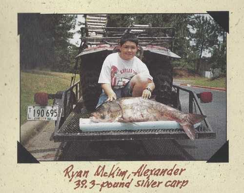 In 1995, Ryan McKim set the rod and reel record for Silver Carp with this fish caught in the Arkansas River. It weighed 39 pounds and 4 ounces.