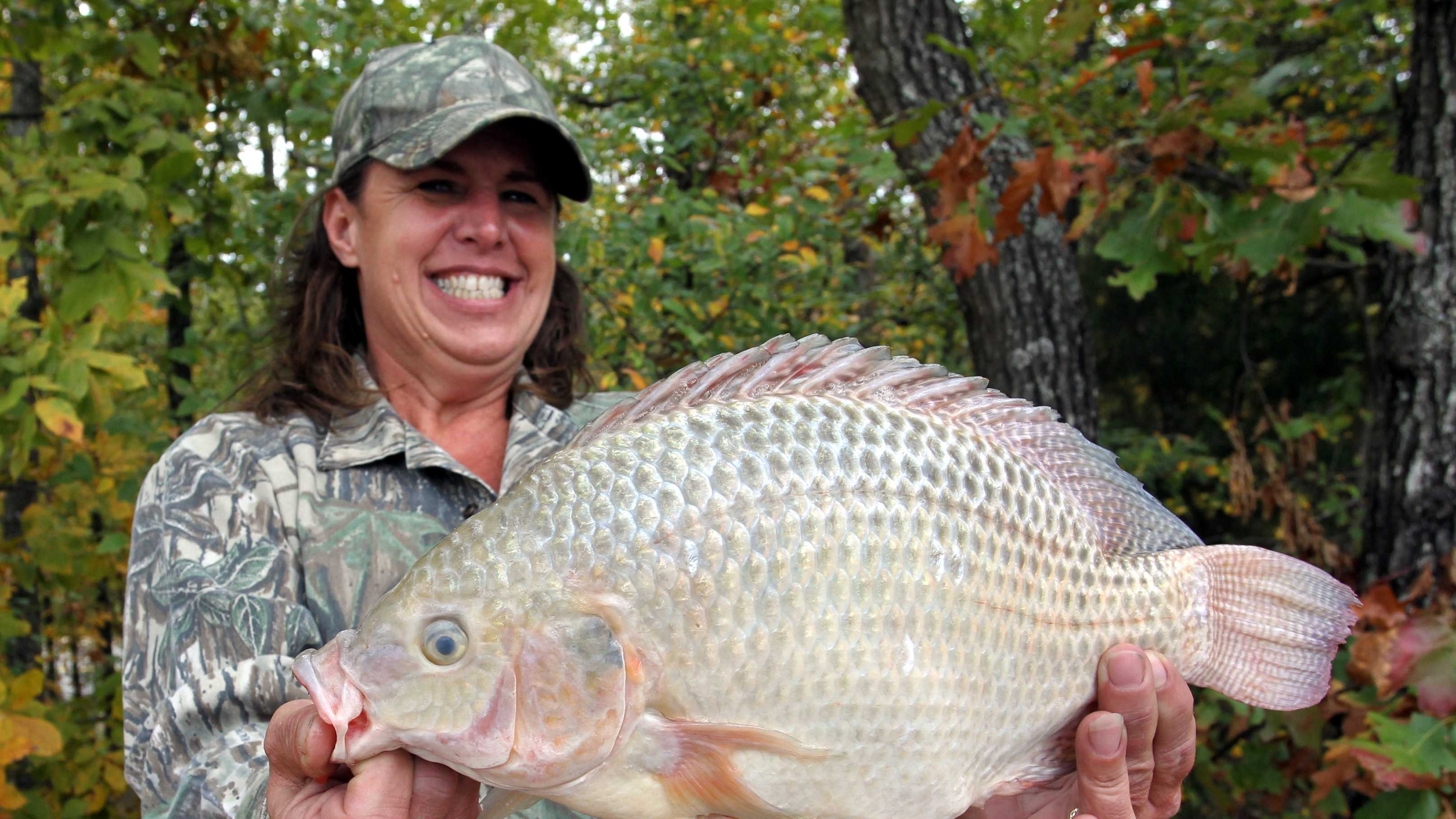 The record Tilapia weighed 3 pounds, 8 ounces. Sheila Easterly caught it at Camp Robinson in 2011.
