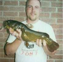 The unrestricted tackle record for Yellow Bullhead is this 4-pound, 9-ounce fish caught in Blue Bayou by Joshua Rosenbaum in 2005.