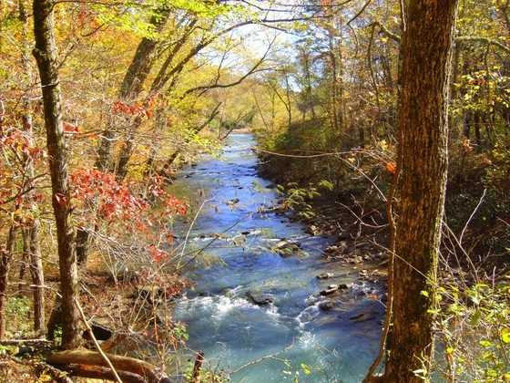 Fall foilage along the Mulberry River.
