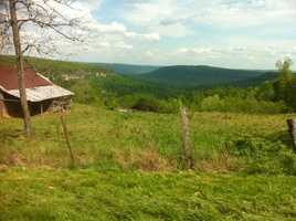 But, speaking of which - Horseshoe Canyon - in Newton county, is my sanctuary. A gem of Arkansas.