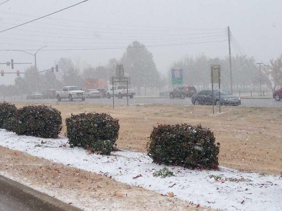 The snow in Springdale.