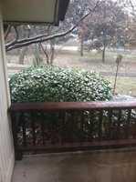 Snowfall accumulating in Bella Vista.
