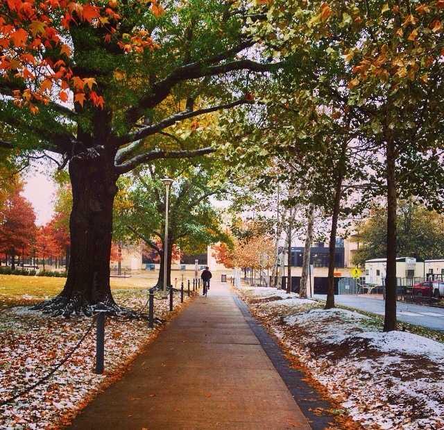 Snow on the U of A campus: Darsha Dodge u local