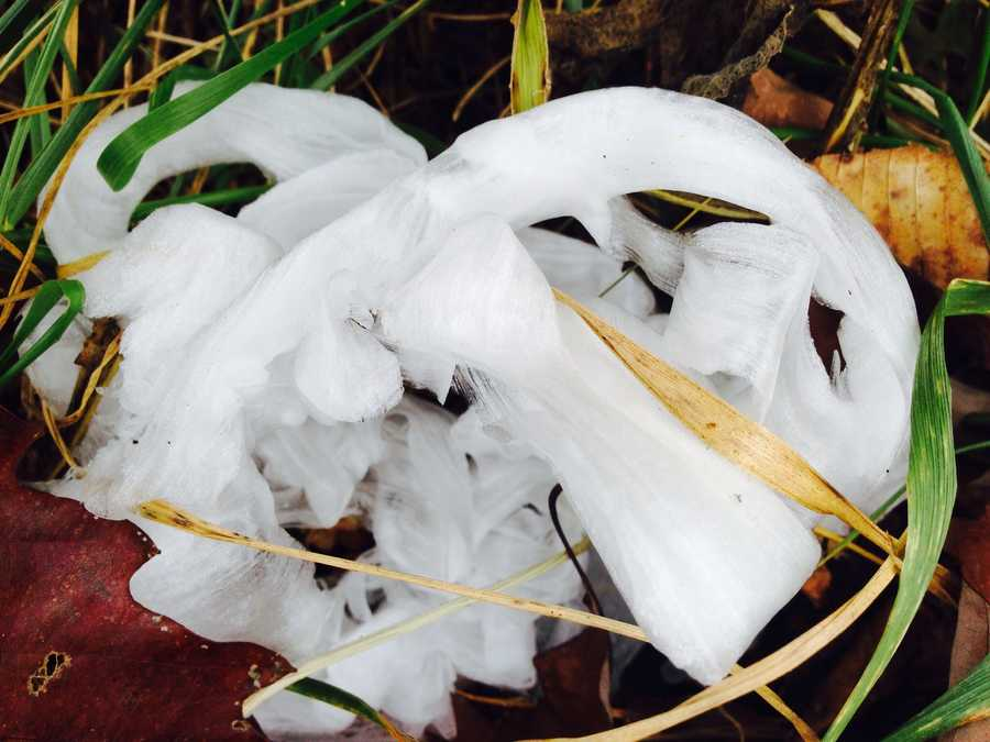 Ribbons of ice in Kingston