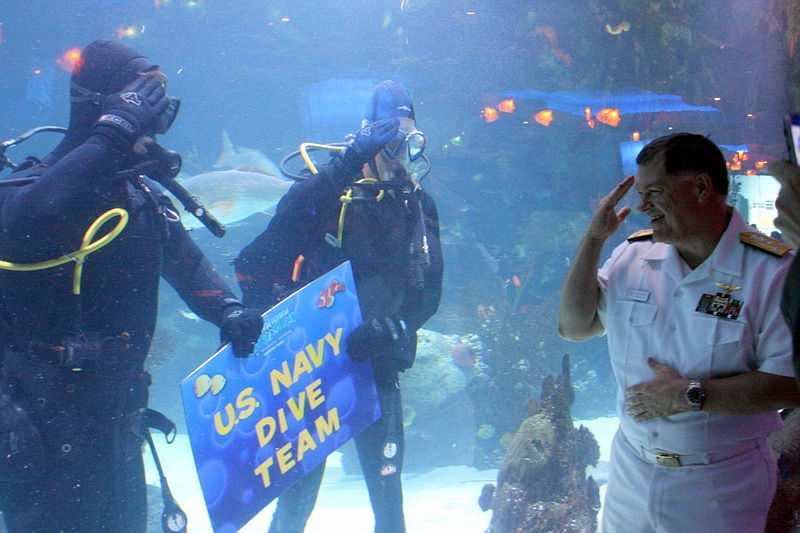 See the fish. Houston's Downtown Aquarium has more than 200 species of aquatic animals - and sometimes the Navy stops by!