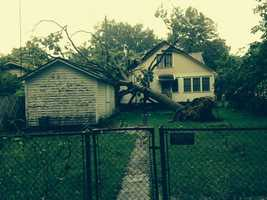 Tree on home in Tilles Park in Fort Smith