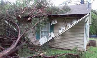 Tree on house in Fort Smith
