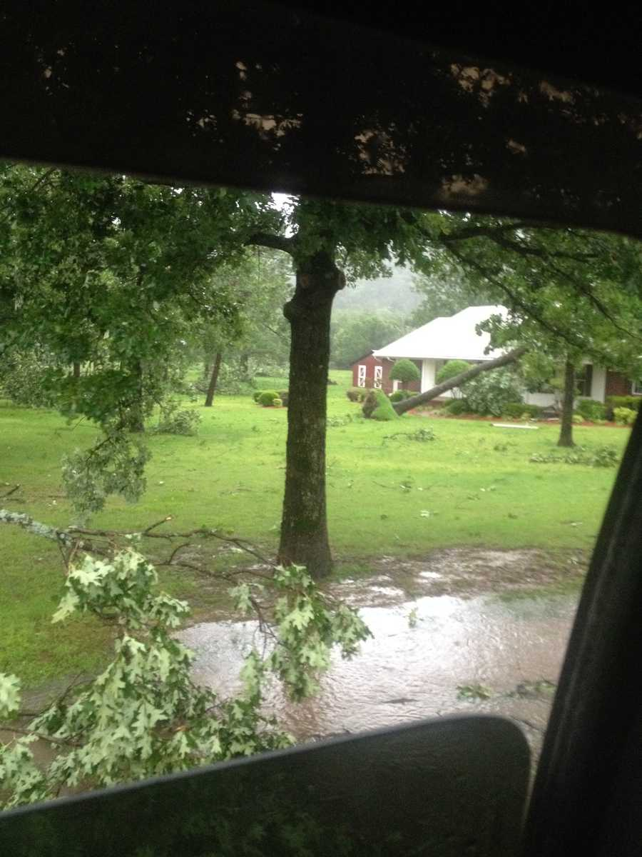 ABM Addition flooding and more uprooted trees in Poteau.